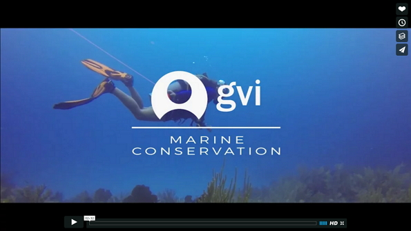 video marine conservation