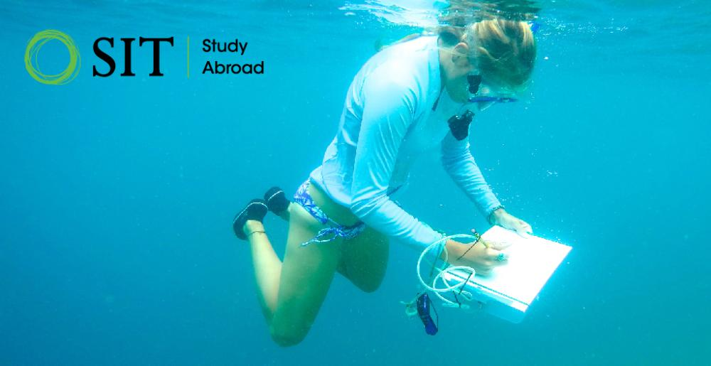 Latin America study abroad