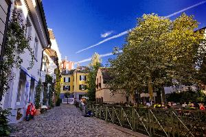 Freiburg Studies